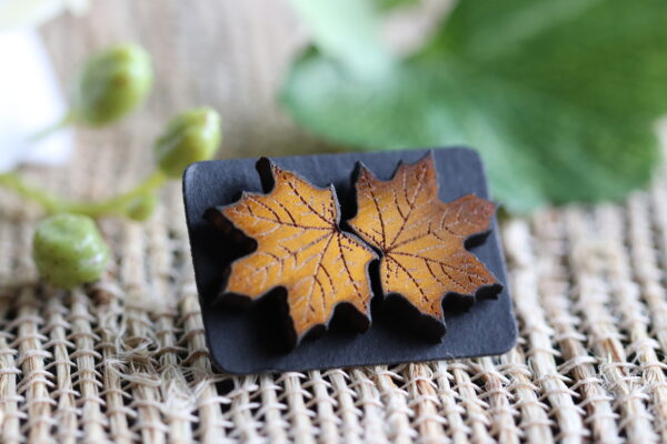 Yellow Maple Leaf 1